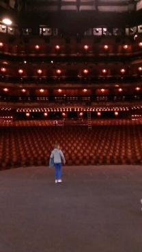 View from the stage - Katie can hear the applause in her head!